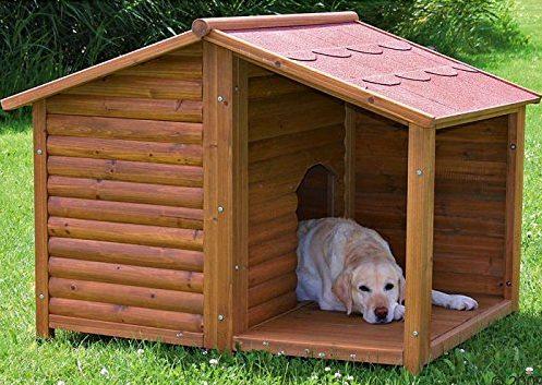 Cuccia per cani con terrazza coperta