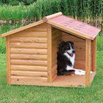 Cuccia per cani - Cuccia con terrazza coperta