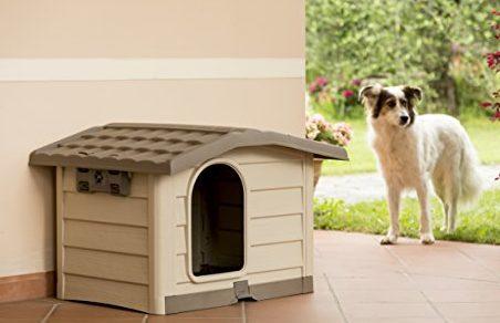 Bama taglia m for Cancelletto per cani da esterno