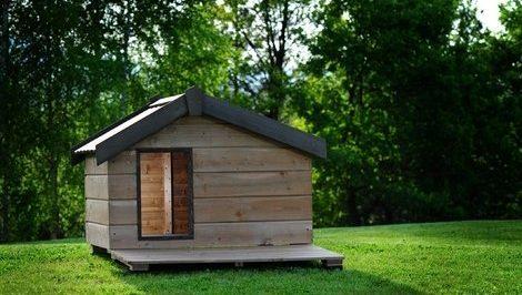Cucce per cani grandi in legno 5 cucce per cani xxl for Casette in legno per cani grandi