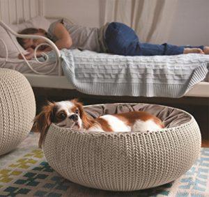 Keter Pets Cozy Cuccia Aperta, Plastica, Sandy, 54x54x19 cm