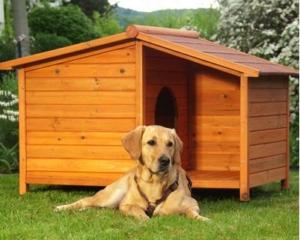 Cuccia per Cani - Dog Kennel Spike Special (2)