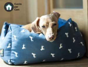 cuccia per cani - Lettini per cani