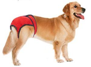 cuccia per cani - mutande per cani maschio lavabili
