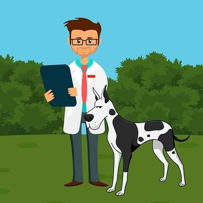 studio aspettativa di vita cani